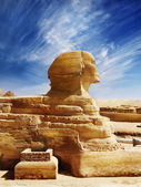 Sphinx — Stockfoto