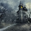 Haunted house — Stock Photo #30190919