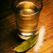 Tequila — Stock Photo #44663719