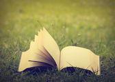 Otwarta księga — Zdjęcie stockowe