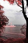 Lago en los tonos rojos — Foto de Stock