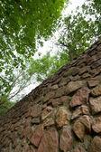 Stones and wood — Stock Photo