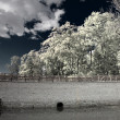 Stock Photo: Infrared Photography