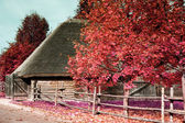 Antique wooden village in Europe in the infrared spectrum — Stock Photo