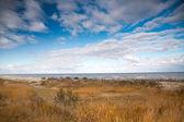 Baltic sea in autumn — Stock Photo