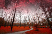 Spring night infrared photography. Elements of this image furnis — Stock Photo