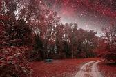 Fotografía infrarroja de la noche de primavera. elementos de esta imagen furnis — Foto de Stock
