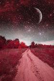 Mystieke lente nacht. elementen van deze afbeelding ingericht door nasa — Stockfoto