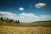 Alaska woods and hills — Stock Photo