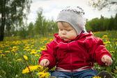 Kind-löwenzahn — Stockfoto