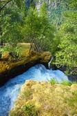 Waterfall fjord — Foto Stock