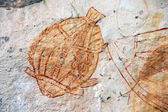Ubirr Fish rock art — Stock Photo
