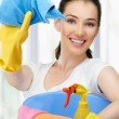 Housewife — Stock Photo #12270499