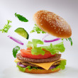 Burger — Stock Photo #12753052