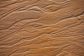 The texture of wet sea sand — Stock Photo