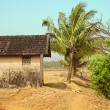 Rural old house against the jungle — Stock Photo