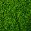 Texture of green terry towel — Stock Photo