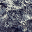 Texture of gray volcanic stone — Stock Photo