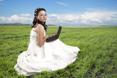 Girl sitting on a grass with the computer — 图库照片