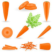 Icon set Carrot — Stok Vektör