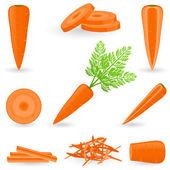 Pictogrammenset wortel — Stockvector