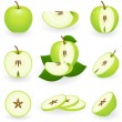 Stock Vector: Green apple