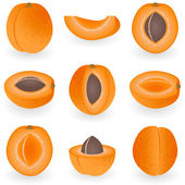 Icon set Apricot — Stock Vector