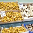 Stock Photo: Mushrooms exposed in market Barcelona