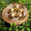 Stock Photo: Golden eggs on grass to represent wealth and luck