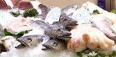 Fresh fishes in a market, in La Boqueria — Stock Photo