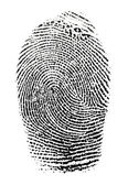 Real fingerprint in white background Super macro — Stock Photo