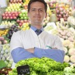 Stock Photo: Trader vegetables