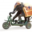 Elephant rides a bicycle - Stock Photo