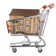 House in a shopping cart — Stock Photo #22260923