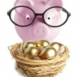 Piggy bank and golden egg — Stock Photo #24518641
