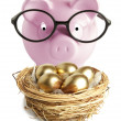 Piggy bank and golden egg — Stock Photo