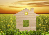 Concept of house — Stock Photo