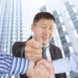 Business handshake — Stock Photo #27863833