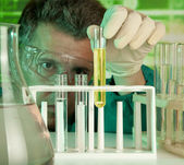 Investigator checking test tubes — Stock Photo