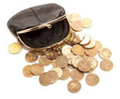 Leather purse and coins — Stock Photo