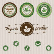 Vector set vintage organic labels — Stock Vector #23901831