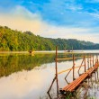 Tamblingan lake - Stock Photo