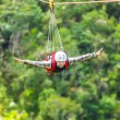 Zip-line - Foto Stock