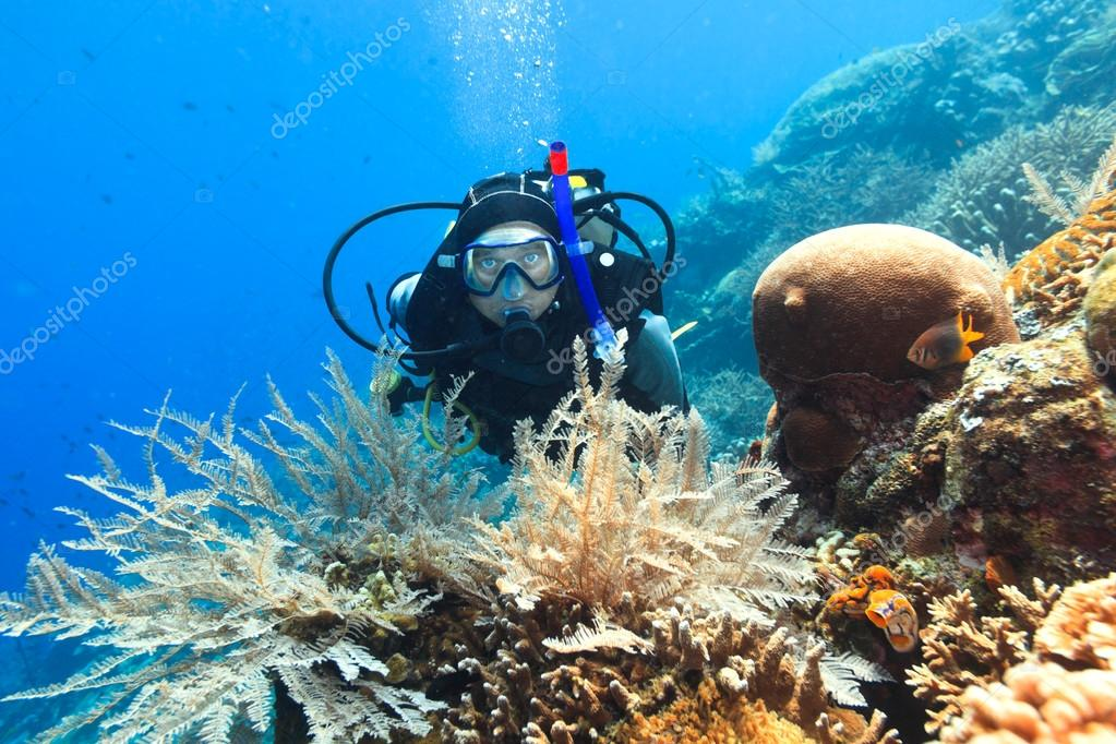 Scuba diver underwater close to coral reef — Stock Photo #13834100
