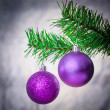 Christmas decorations — Stock Photo #16806503