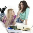 Stock Photo: Girlfriends riding and writing in books on white