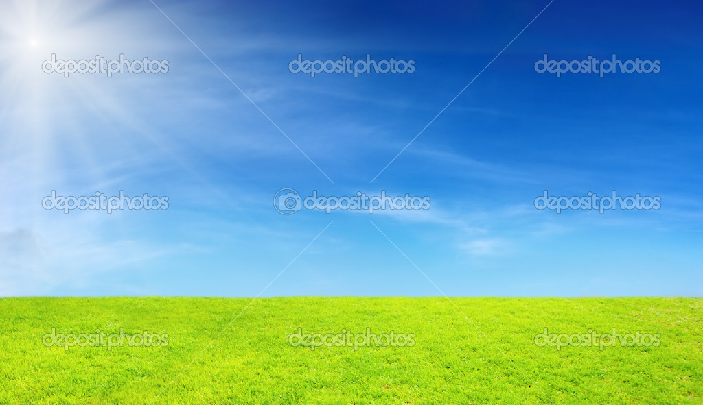 Green field and blue sky — Stock Photo #12448984