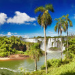 Iguassu Falls, view from Argentinian side — Stock Photo #22070885