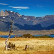 Stock Photo: Torres del Paine National Park, Chile