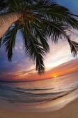 Tropical beach, thailandia — Foto Stock